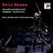 Stradivarifestival Chamber Orchestra