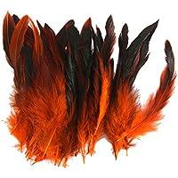 Lot 50 Plumes de Coq Anciennes Naturelles pour Bijoux Sac DIY 12-18cm Orange