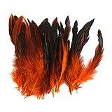 Grosshandel 50 Schoene Hahnenfedern 12-18cm / 4-7inch Orange