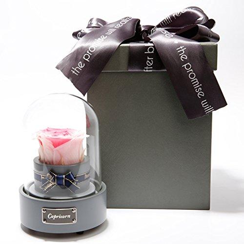 Boîte à musique immortelle fleurs,Roses Boîte dôme en verre [rose colorée] Bracelet amoureux minimaliste Le jour de noël Décorations de réception-E 6x9inch