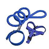 NAttnJf 3 Stücke Hund Zugseil Harness Kragen Leine Outdoor Walking Puppy Pet Supplies Blau M