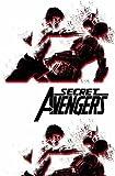 Secret Avengers: Secret Avengers: Run The Mission, Don't Get Seen, Save The World. Run the Mission, Don't Get Caught, Save the World. Vol. 3