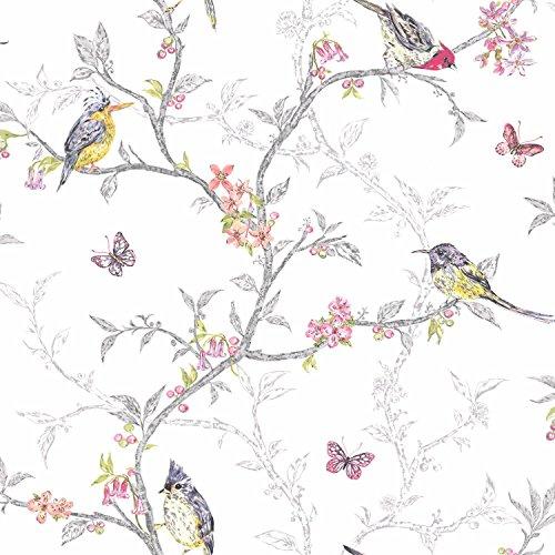 phoebe-birds-wallpaper-white-98080