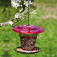 Mangiatoia per uccelli in vetro rosso rotondo