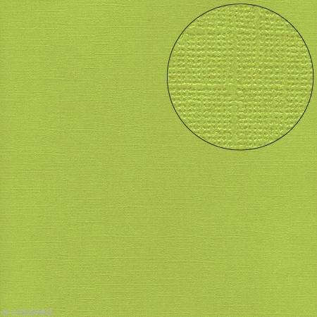 Bazzill Basics Papier Scrapbooking Blatt Bling Petty Cash, grün (Bazzill Bling-papier)