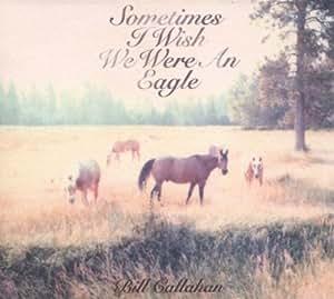 Sometimes I Wish We Were An Eagle , Bill Callahan