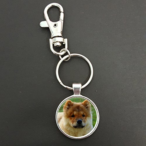 chow-chow-dog-pendant-on-a-spring-hook-keyring-bag-tag-ideal-birthday-gift-n783