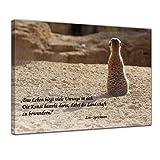 Bilderdepot24 Leinwandbild mit Zitat - Das Leben - (Zen-Sprichwort) 40x30 cm - Sprüche und Zitate - Kunstdruck mit Sprichwörtern - Vers - Bild auf Leinwand - Bilder als Leinwanddruck - Wandbild