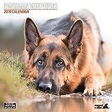 German Shepherd Traditional 2019 Calendar