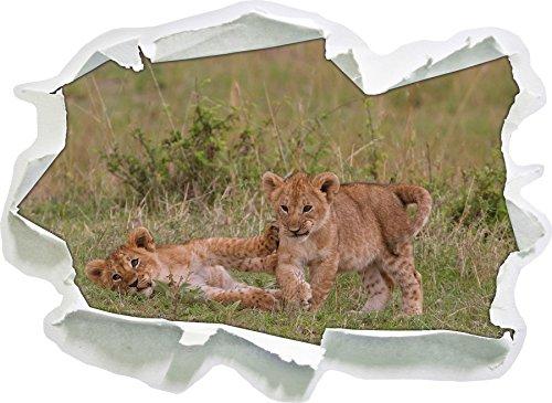 due cuccioli di leone piccoli giocano, carta 3D autoadesivo della parete formato: 62x45 cm decorazione della parete 3D Wall Stickers parete decalcomanie