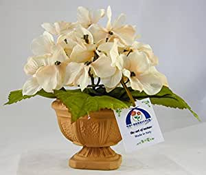38° Parallelo Creations - Composizione floreale profumata circolare (vari colori) realizzata su vasetto di terracotta decorato - Idea regalo Made in Italy (CREAM)