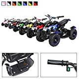 Actionbikes Motors Mini Kinder Elektro Quad ATV Cobra 800 Watt