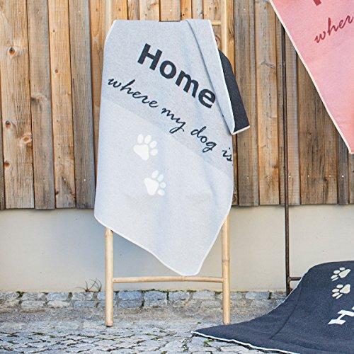 Preisvergleich Produktbild David Fussenegger Haustierdecke Home is Where My Dog is Filz 70 / 90