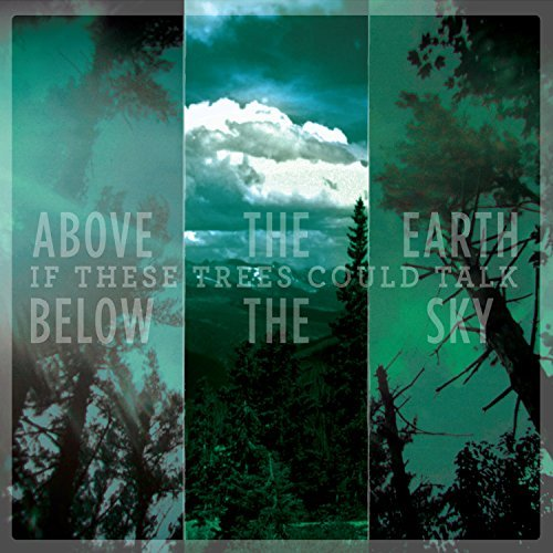Above The Earth, Below The Sky by If These Trees Could Talk