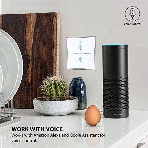 Wlan Alexa lichtschalter, Wifi Smart Home lichtschalter arbeitet mit Amazon Alexa Google Home, gehärtetes Glas Touchscreen-schalter, Timing-Funktion, Überlastungsschutz, kein Hub erforderlich(2 Weg)