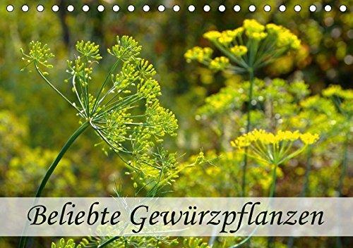 Gewürzpflanzen der Heilpflanzen
