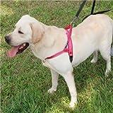 CGDZ Große Hundehalsbänder Harnesses Sommer Komfortable Schnellspanner Atmungsaktive Haustier Hund Outdoor Sports Farbe Brustgurte Leine XS Rosa