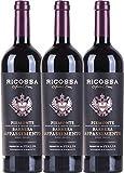 VINELLO 3er Weinpaket Rotwein - Barbera Appassimento DOC 2018 - Ricossa mit...