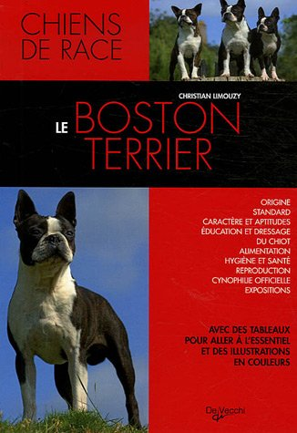 Le Boston terrier