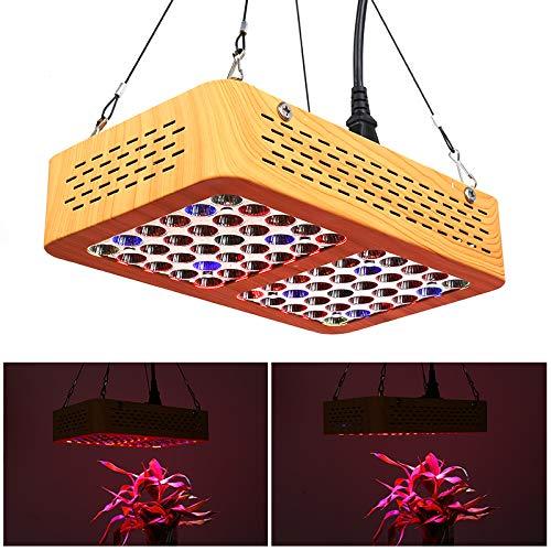 Generic 300 W LED Pflanzenlicht (60 LEDs, 60 Grad Winkel, Weitwinkellänge, 2900 Lumen)