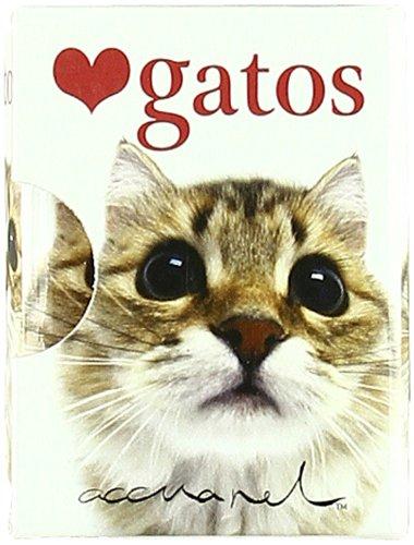 Descargar Libro Gatos (Accuarel) de Hellen Exley