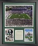 Legends Never Die Michigan State University - Spartan Stadium Framed Photo Collage, 16 x 20 by Legends Never Die