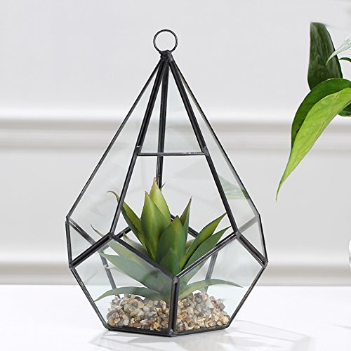 Geometric Glass Cover Vase/simulation Of Plant Micro-landscape Ornaments/nordic Creative Home Living Room Decorations-l