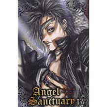 Angel Sanctuary T17 (NED)