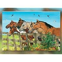 20563 - Die Spiegelburg - Boxpuzzle: Pferdefreunde - Auf der Koppel, 72 Teile, 72 Teile