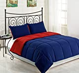 Cozy Beddings Goose Down Comforter Kings Review and Comparison