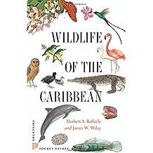 Wildlife of the Caribbean (Princeton Pocket Guides)