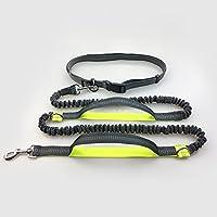 ZQ@QXCorrer perro tracción cuerda doble reflexivo cordón elástico tracción, verde