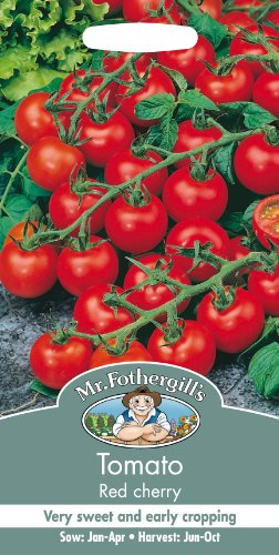 mr-fothergills-15306-50-count-cherry-tomato-seed-red