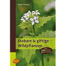 Essbare und giftige Wildpflanzen: Über 200 Kräuter, Beeren und Nüsse