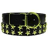 Platinum Pets Echtes lc29inclmstr groß Leder Hundehalsband mit Sternen, Corona Lime