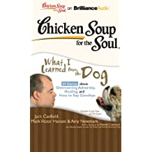 Chicken Soup for the Soul What I Learned from the Dog: 34 Stories About Overcoming Adversity, Healing, and How to Say Goodbye