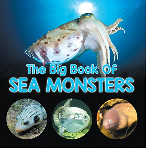 The Big Book Of Sea Monsters (Scary Looking Sea Animals): Animal Encyclopedia for Kids (Children's Fish & Marine Life Books) (English Edition) por Baby Professor