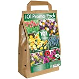 Greenbrokers Collection Lot de 101 bulbes de fleurs 6 variétés de fleurs de printemps