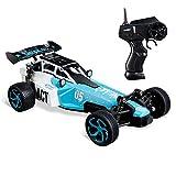 Virhuck 1:24 RC Auto mit 2 Batterien, 2,4 GHz Funkfernbedienung 2WD High Speed 15 KM / H Fast Beast RTR Elektro Fast Racing Auto für Kinder (Blau)