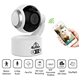 Baby Monitor Video, IP Camera,1080P HD, rilevamento di movimento a 360 °, monitor per animali...