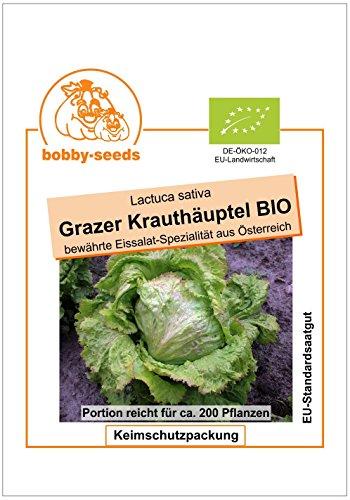 Bobby-Seeds BIO-Salatsamen Grazer Krauthäuptel Eissalat Portion