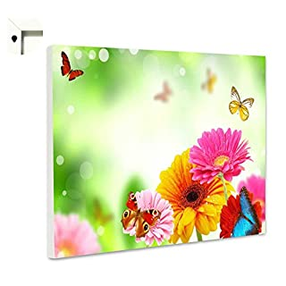 Magnettafel Pinnwand Memoboard Motiv Natur & Blumen Bunte Blumen & Schmetterlinge (60 x 40 cm)