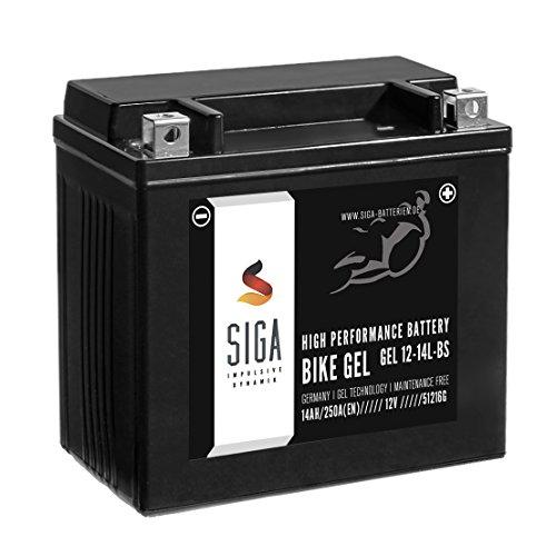 SIGA Bike GEL YTX14L-BS Motorrad Batterie Harley 14Ah 12V 250A/EN GEL12-14L-BS, 65958-04A, HVT3