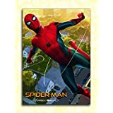 Tamatina Hollywood Movie Wall Poster - Spider-Man - Homecoming - Spider-Man & Iron Man - HD Quality Movie Poster