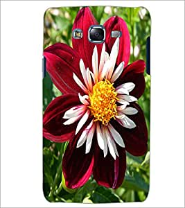 PrintDhaba Flower D-1138 Back Case Cover for SAMSUNG GALAXY ON 5 (Multi-Coloured)