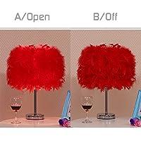 ZhongYeYuanDianZiKeJi Lámpara de mesa de plumas Vintage pluma Lámpara de pie de cubierta-Dormitorio Escritorio Lectura de cabecera sala Pasillo Balcón Balcón Iluminación Deco (Rojo)