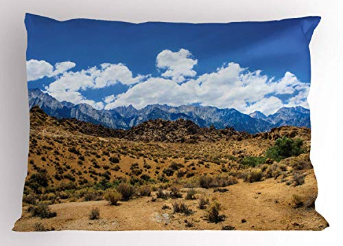 HFYZT Alabama Pillow Sham, Landscape of Barren Lands of Nevada Mountains with Rock Formations on The Slopes, Decorative Standard Queen Size Printed Kissenbezug Pillowcase, 18 X 18 Inches, Multicolor