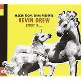 Broken Social Scene Presents Kevin Drew: Spirit If...