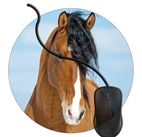 Gaming Mauspad Runde Braunes Pferd Mit Der Schwarzen Mähne spezielle Oberfläche verbessert Geschwindigkeit und Präzision rutschfest Mouse Pad 2K84