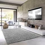 Shaggy-Teppich | Flauschiger Hochflor fürs Wohnzimmer, Schlafzimmer oder Kinderzimmer | einfarbig, schadstoffgeprüft, allergikergeeignet in Farbe: Grau; Größe: 60 x 90 cm